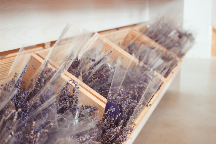 Ep2 Girls Date Ideas – Terre Bleu Lavender FarmVisit!